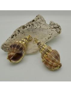 CIONDOLO Conchiglie CON BORDO placato in metallo ORO conchiglia a punta per Bigiotteria